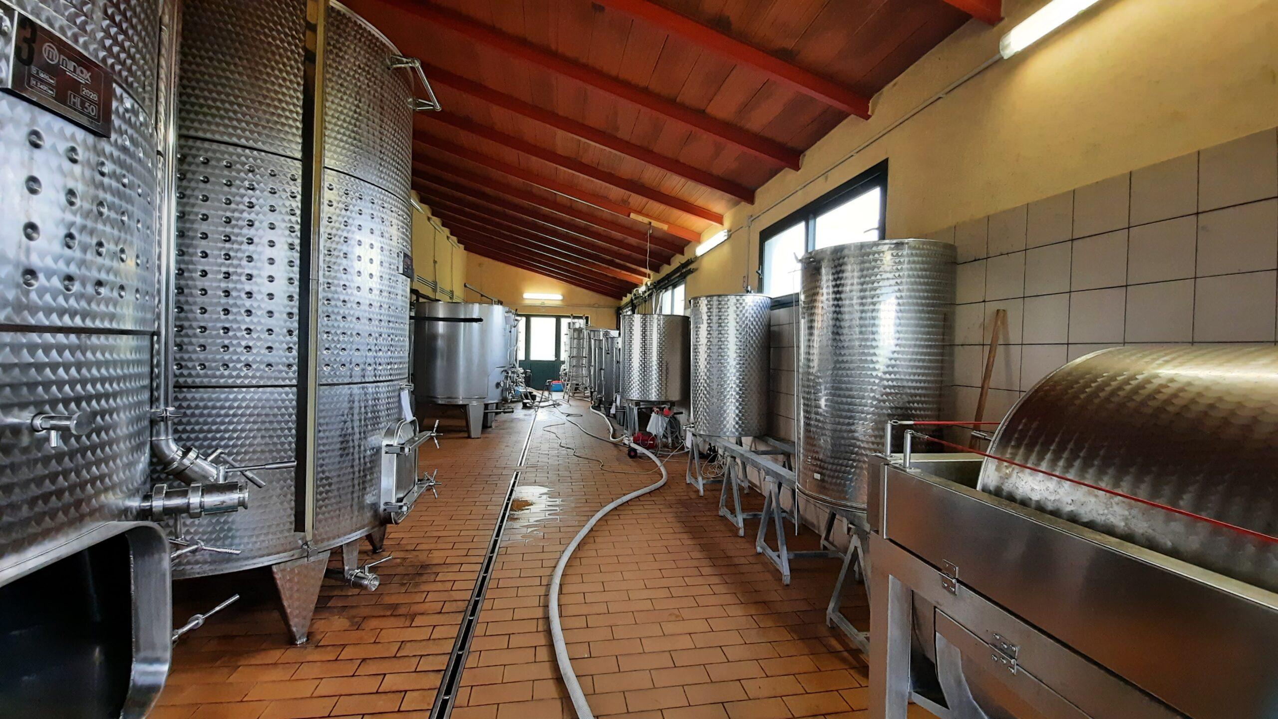 Winery - Tenute Filigheddu